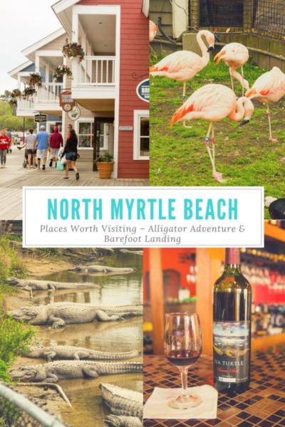 North Myrtle Beach Places Worth Visiting – Alligator Adventure & Barefoot Landing
