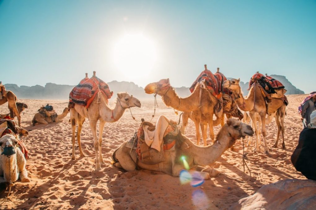 Photos to Inspire You to Travel to Jordan