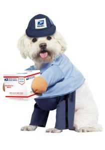 usps-dog-mail-carrier-costume