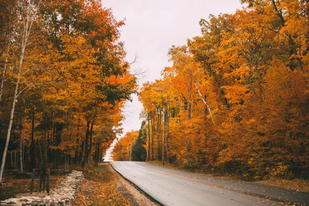 Taken just outside Edgewood Orchard Galleries. fall colors scenic fall drive in Door County Wisconsin