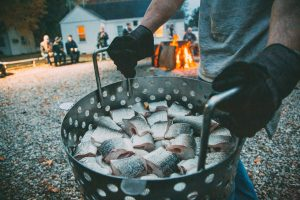 The white fish used in a fish boil in Door County.