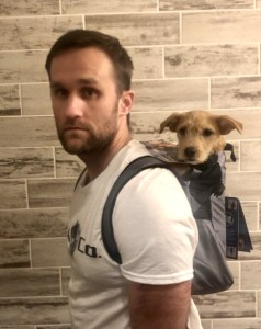 K9 Sport Sack® Trainerb - Perfect for Active Humans!