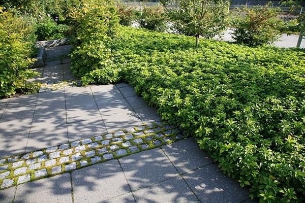 haveplan terrasse