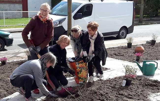 Hokus-Krokus i haven