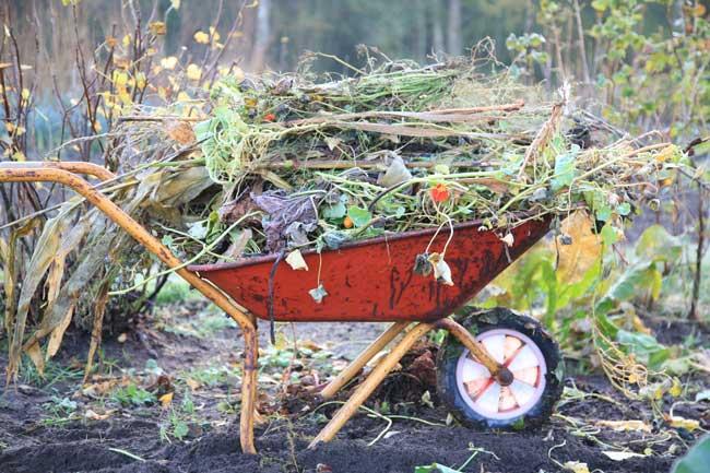 kompostbunken er selvskreven i den miljøvenlige have