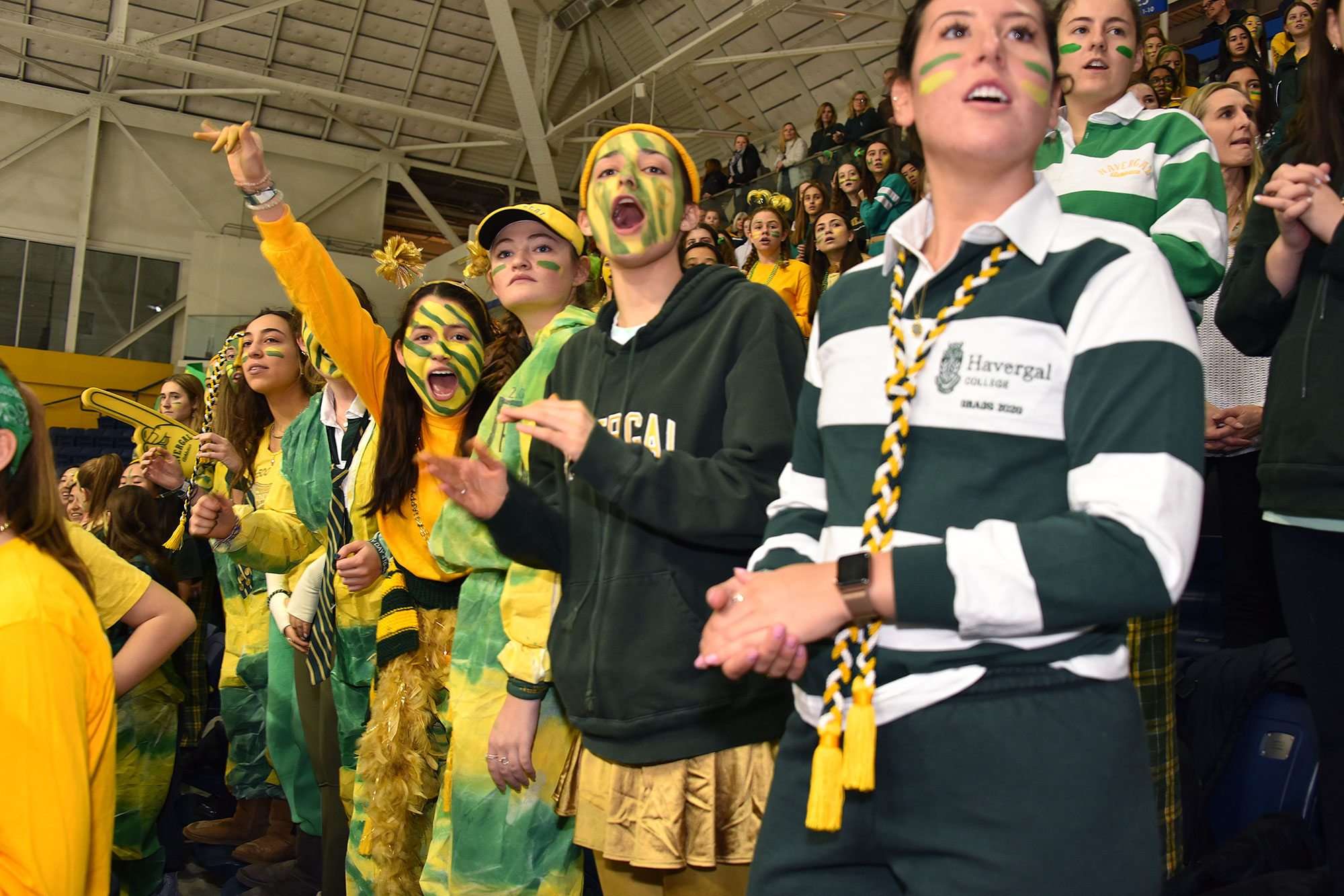 Students in green and gold sprit attire cheer at a sporting match.