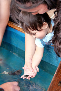 child holding marine critter