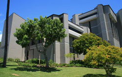 Shidler College of Business building