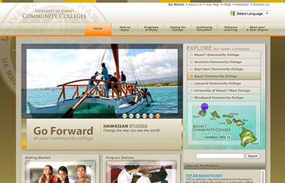 web site screen cap