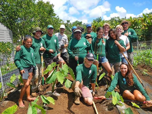kauai-gofarm-group