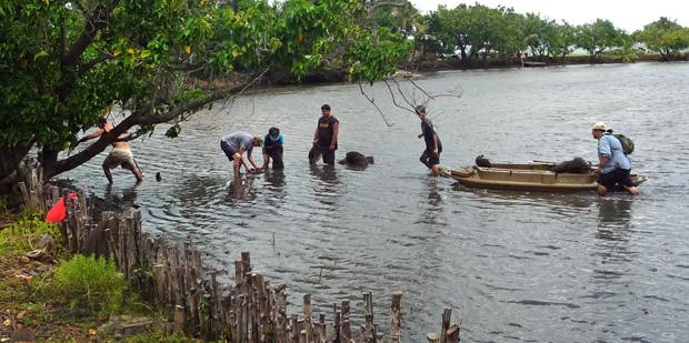 Waikalua Fishpond