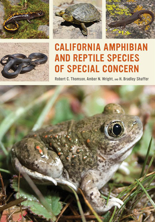 Cover of California Amphibian and Reptile Species of Special Concern