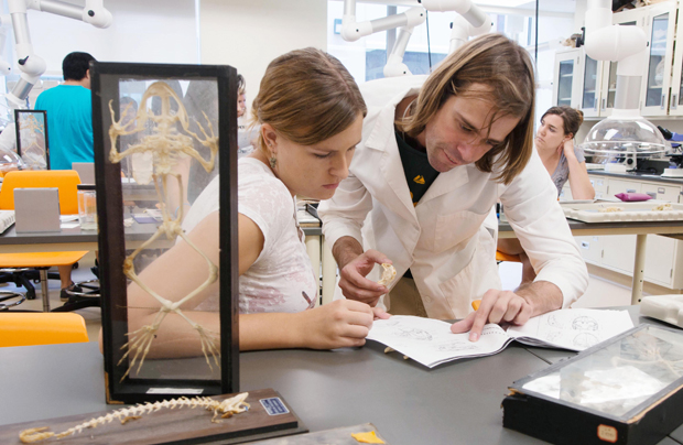 Two people working in a biology lab