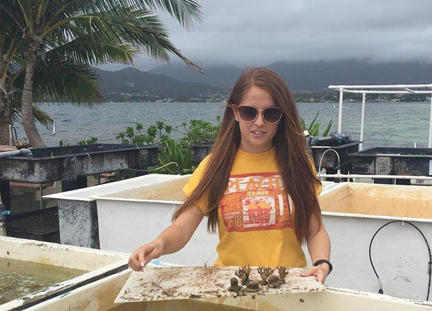 Environmental science undergraduate students make new Hawaiʻi discoveries