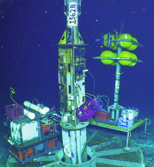 Viruses In The Oceanic Basement