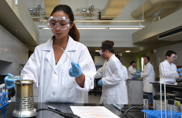 Students work in the new science labs at Hawaii C C