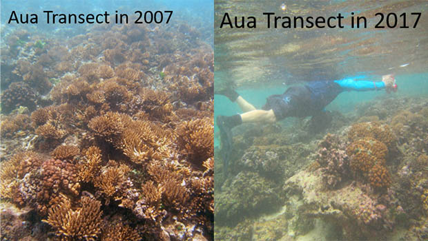 Comparison of the coral reefs 2007 and 2017