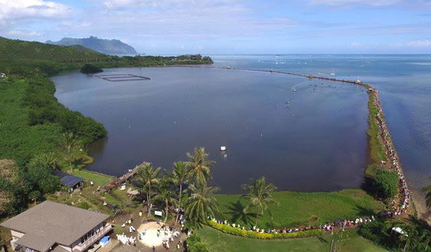 Loko Iʻa App Puts A Native Hawaiian Fishpond In The Palm Of Your Hand