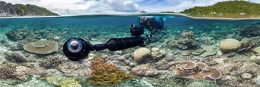 person filming underwater at coral reef