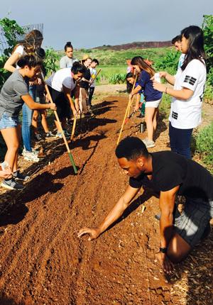 UH West Oahu hosting sustainable ag conference   University