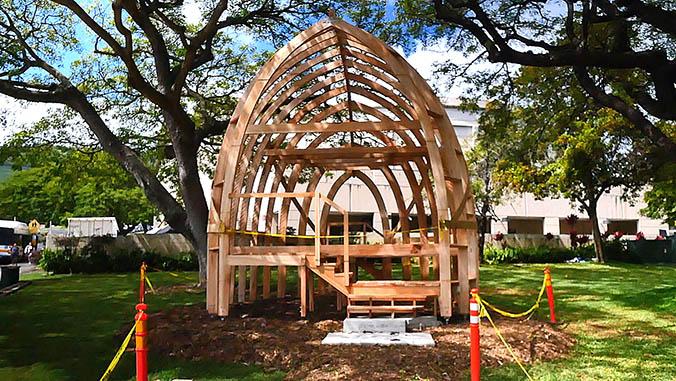 Framework for the full-sized albizia house