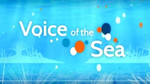 """Title tv screen with """"Voice of the Sea"""""""