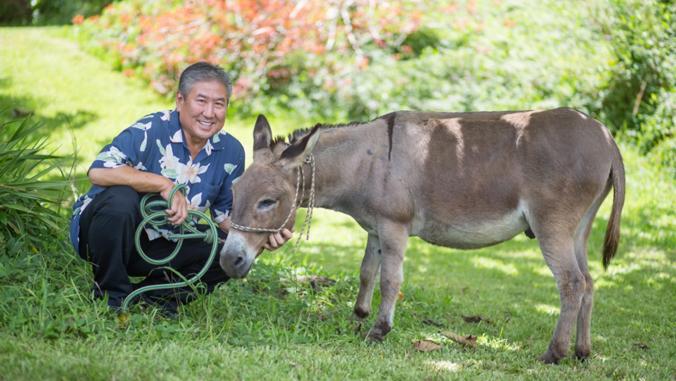 Alan Wong and Bob-Bob