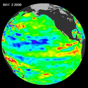 The latest image of sea surface temperatures from NASA's Jason-1 satellite. There is some warming in Eastern Pacific on equator (in red). The PDO signal is still strong. Credit: NASA JPL