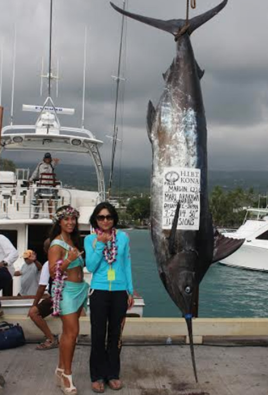 Veteran angler Mari Arakawa with her HIBT record 622.6-pound Pacific blue marlin caught on 50-pound test line. (Photo courtesy of HIBT)