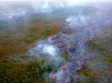 One of the breakouts off the main Kilauea June 27th Lava Flow on Thursday, November 13, 2014. Photo courtesy of Hawaii County Civil Defense