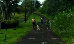 People cited for being in the mandatory evacuation area in Lower Puna. DOCARE Photo