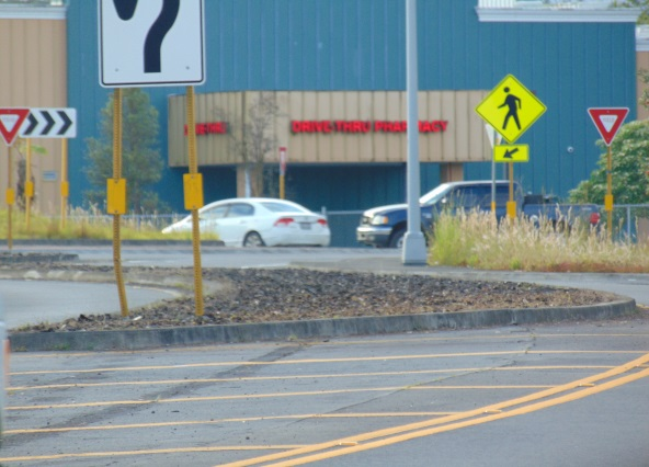 Pahoa Roundabout Photo 2
