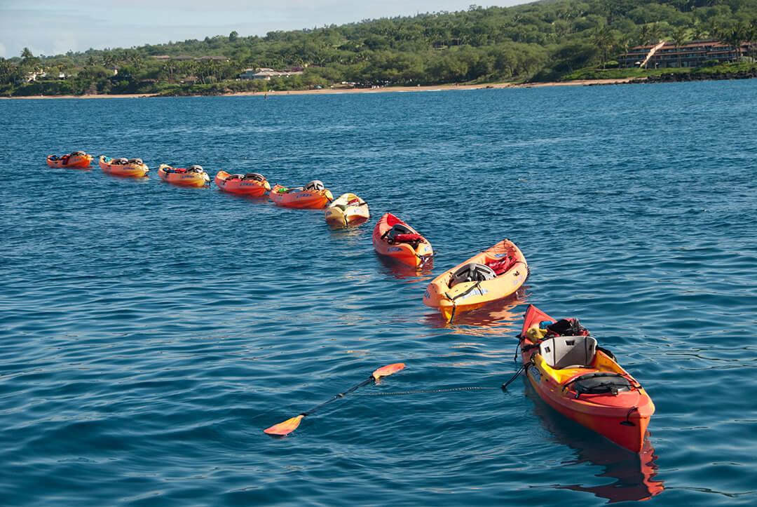 Kayak Whale Watch 3hr – Wailea Beach – Hawaiian Ocean Sports