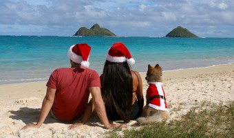 Even if the geography views of the holidays don't match, there's one idea that does, and that is Ohana.