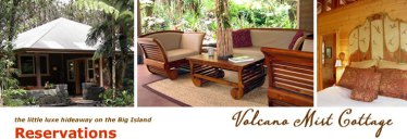 Volcano Mist Cottage Hawaii Eco Resort