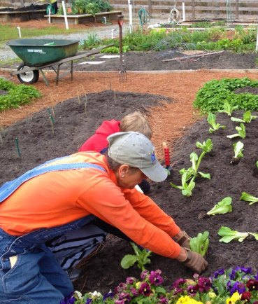 Big Island Organic Farms - Parent & child planting a garden