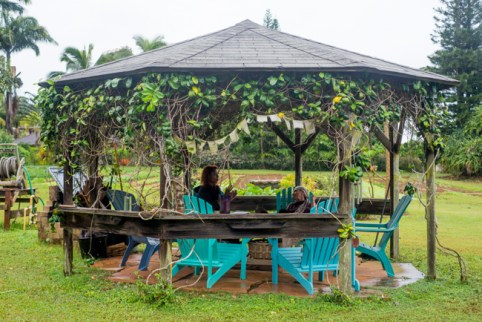 Kauai Organic Farms - Garden Lounge area