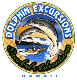 Dolphin Excursions Hawaii - Oahu adventures & ecotourism