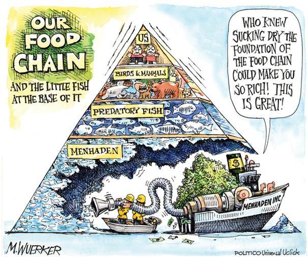 Food Chain - Environmental Satire Cartoons