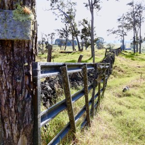 Metal gate and rock wall
