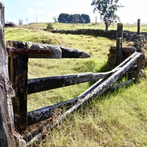 Broken old wood gate