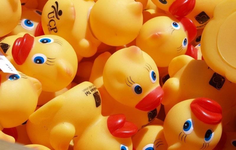 Rubber Duckie, you're the one