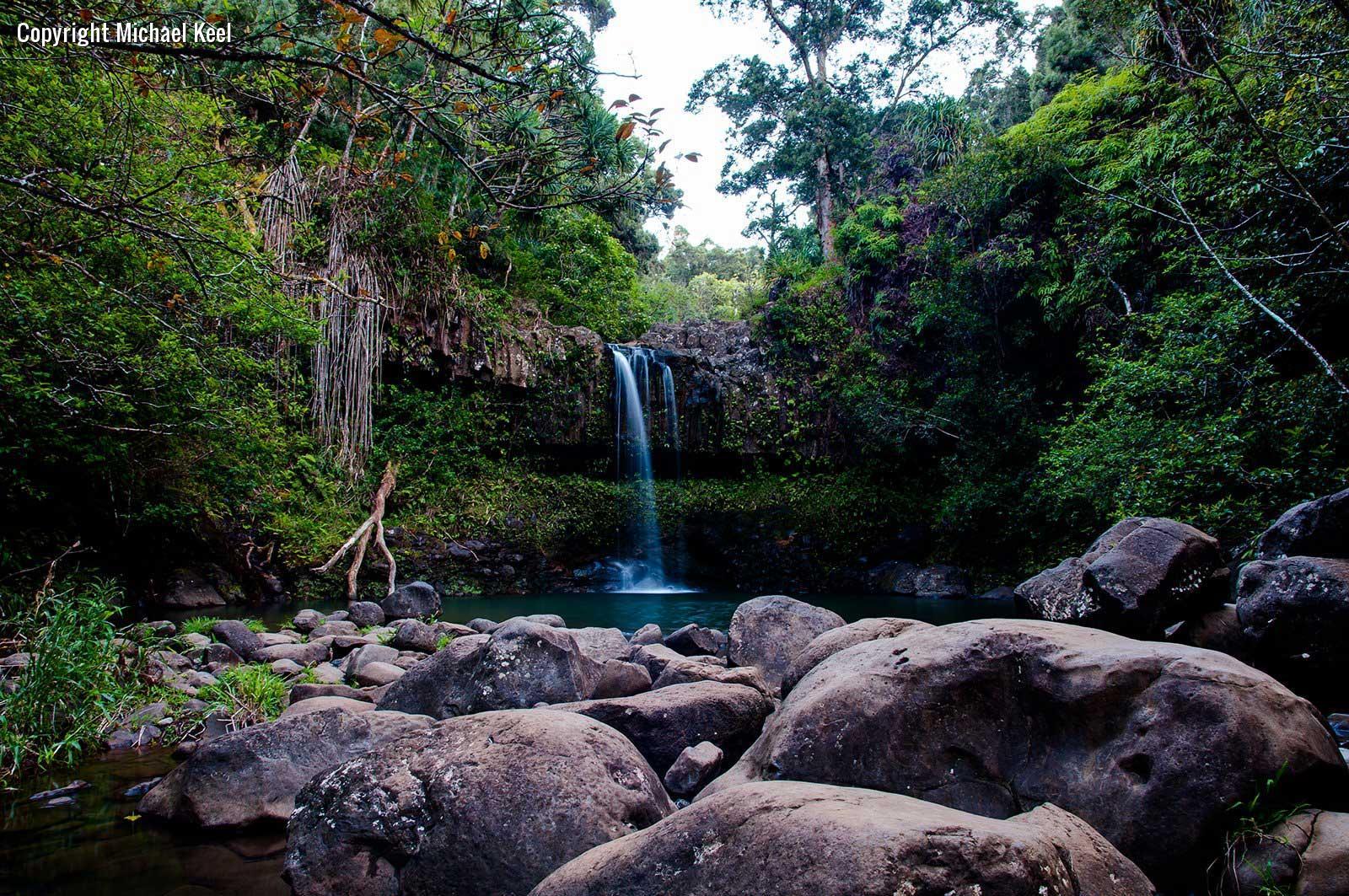 Tropical Rainforest Youtube Tropical Rainforest Biome