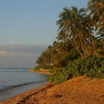 Kahala Beach Afternoon