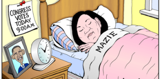 US Congresswoman Mazie Hirono sleeps in, misses votes cartoon