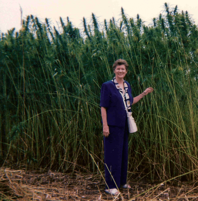 Rep. Cynthia Thielen stands before a hemp crop in France