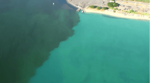 GOO: The molasses spill impacted sealife in Ke'ehi Lagoon, seen here, and Honolulu Harbor