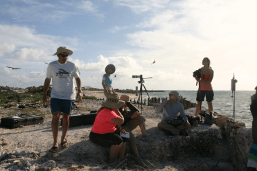 UAS team at Shell Beach on Tern Island. NOAA UAS Project Lead Todd Jacobs (left, standing), USFWS [title] Michele Kuter (seated, in pink), NOAA Puma operators ENS Kerryn Schneider (looking into viewer) and LTJG Tanner Sims (seated, right), with filmmakers Andrew (standing, in background) and Robin Eitelberg (standing, with camera) on hand. Credit: Justin Rivera/NOAA