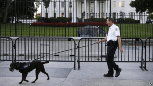 A member of the Secret Service Uniformed Division with a K-9 walks along the perimeter fence along Pennsylvania Avenue outside the White House in Washington, Sept. 22, 2014.