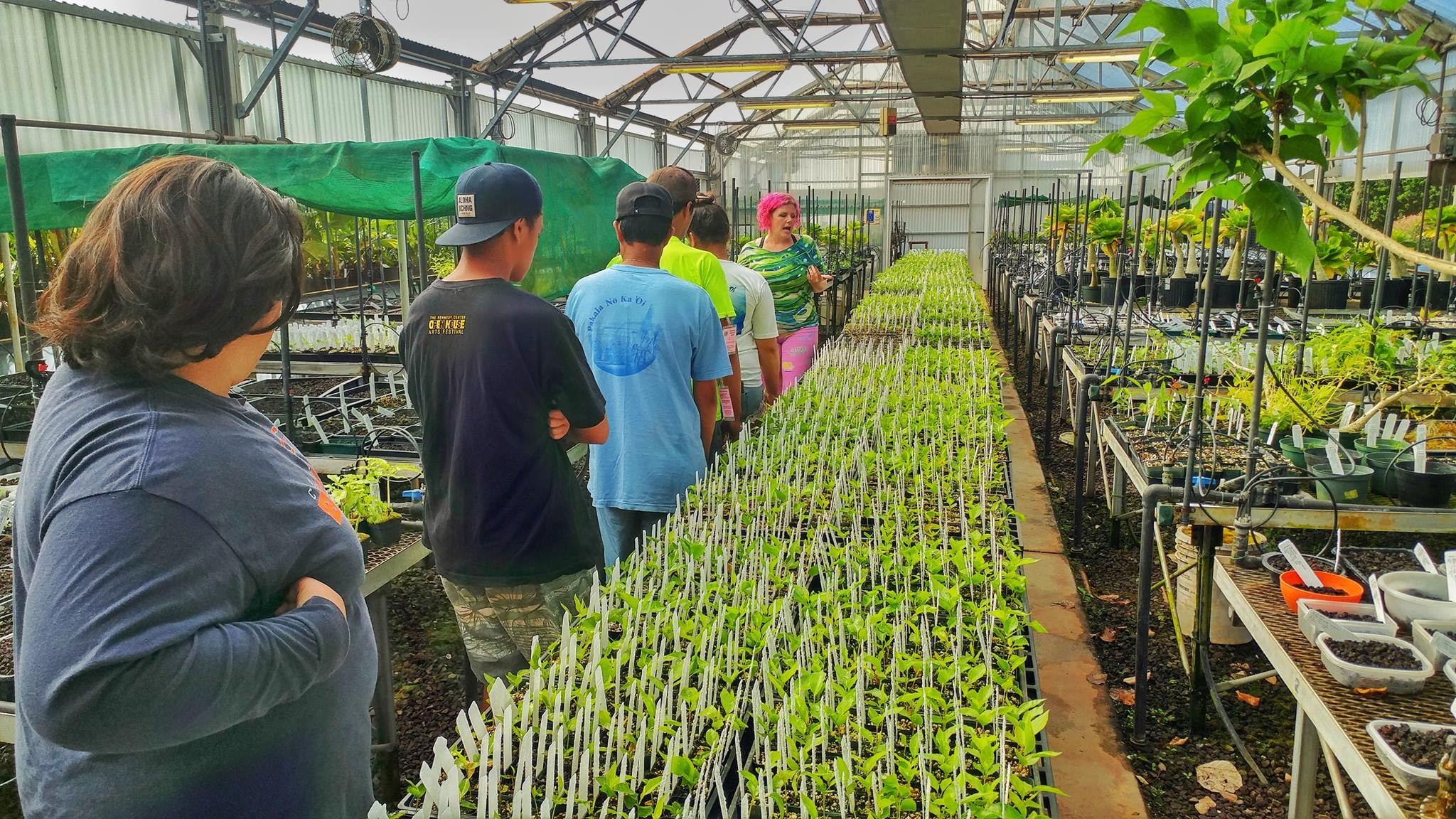 Summer Agriculture Internships Available Participants tour